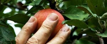 De gesplitste aankoop naakte eigendom en vruchtgebruik kan toch…